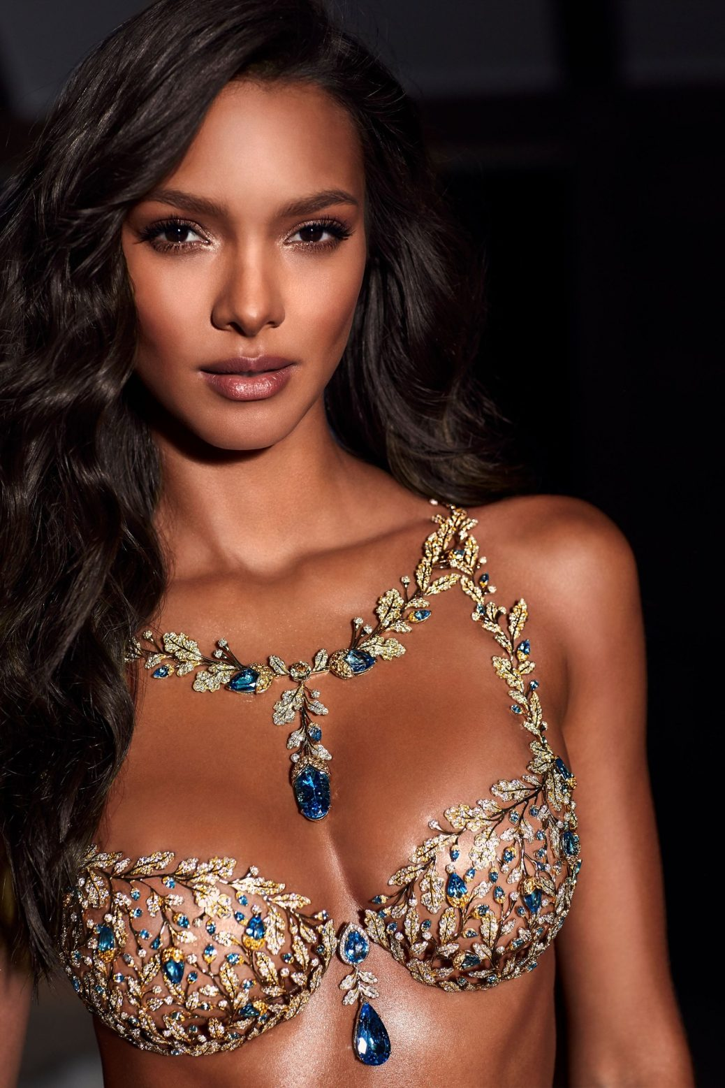 Victoria's Secret Angel Lais Ribeiro in the 2017 Champagne Nights Fantasy Bra by Mouawad