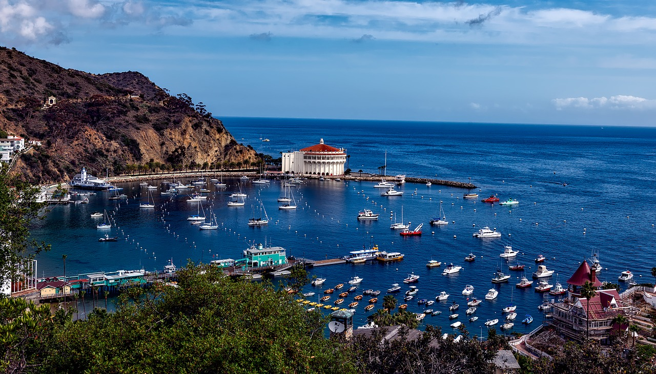 Surviving Catalina Island