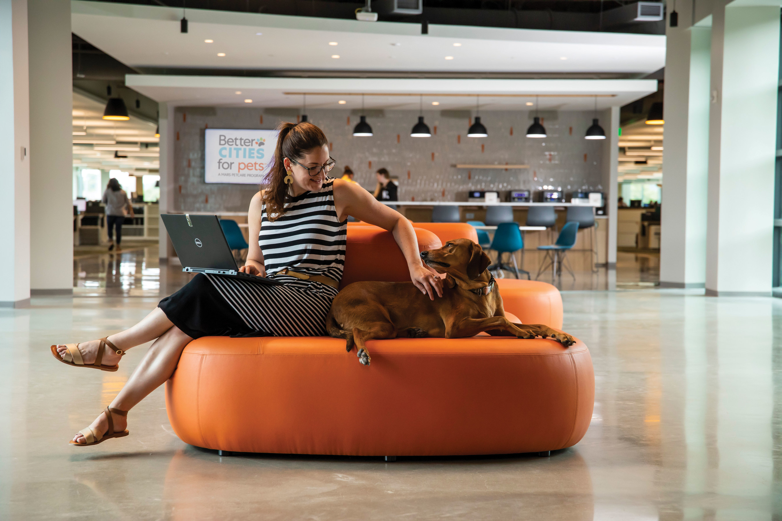 pet friendly workplace Mars