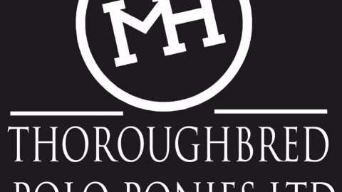 Thoroughbred Polo Ponies Ltd.